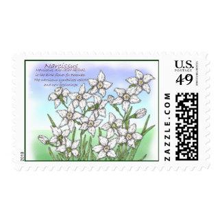 Narcissus Postage
