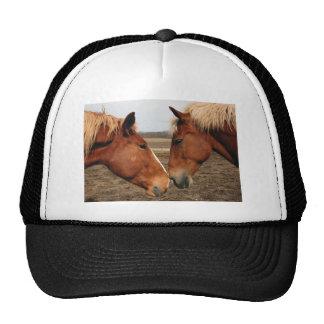 Narices conmovedoras gorras