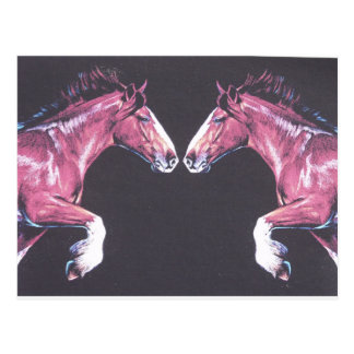 Nariz de los caballos de proyecto a sospechar tarjeta postal