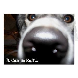 Nariz de perro fornida Nosy, puede ser acerino… Tarjeta De Felicitación