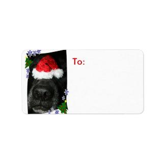 Nariz de perro que lleva el gorra de Santa, mezcla Etiquetas De Dirección