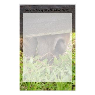 Nariz del caballo que pasta debajo de la cerca papelería de diseño
