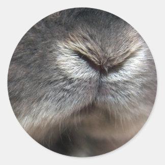 Nariz del conejito (pegatina)
