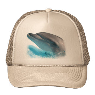 Nariz del delfín gorro de camionero