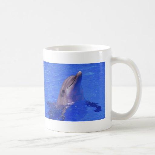 Nariz del delfín tazas de café