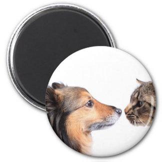 Nariz del gato y de perro a sospechar imán redondo 5 cm