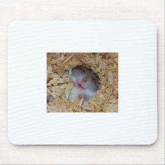 Nariz del hámster lindo y cojín de ratón alfombrilla de raton