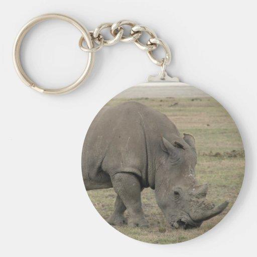 nariz del rinoceronte llavero