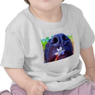 Nariz negra de la mezcla del laboratorio, pequeña  camiseta