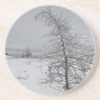 Narnia Posavasos Personalizados