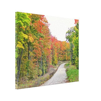 NARROW COUNTRY ROAD BETWEEN TREES WITH FALL FOLIAG CANVAS PRINT