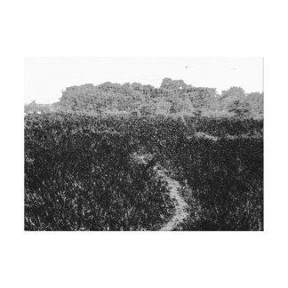 Narrow walking path through a nature park gallery wrap canvas