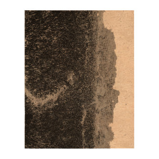 Narrow walking path through a nature park cork paper