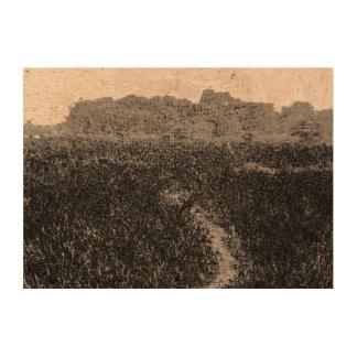 Narrow walking path through a nature park cork paper prints