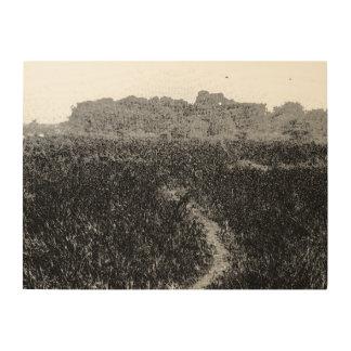 Narrow walking path through a nature park wood canvas