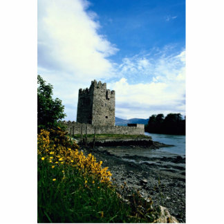 Narrow water castle, County Down, Ireland in Europ Acrylic Cut Out