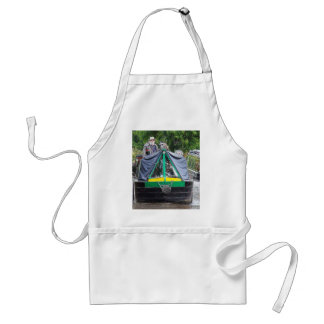Narrowboat Dabbler Coventry Canal Nuneaton Aprons
