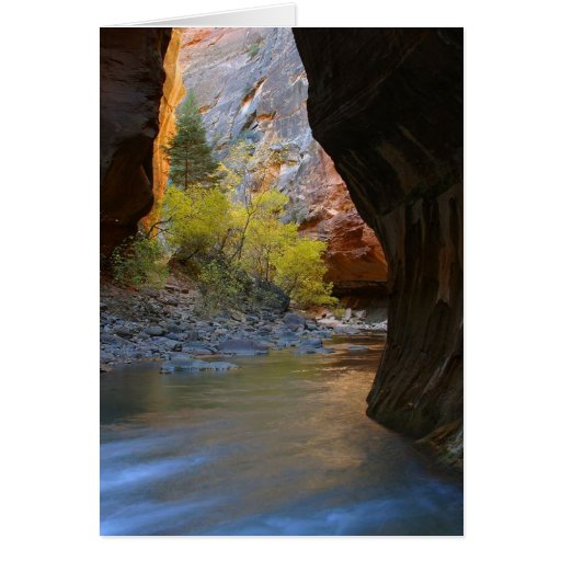 Narrows In Zion National Park Greeting Card