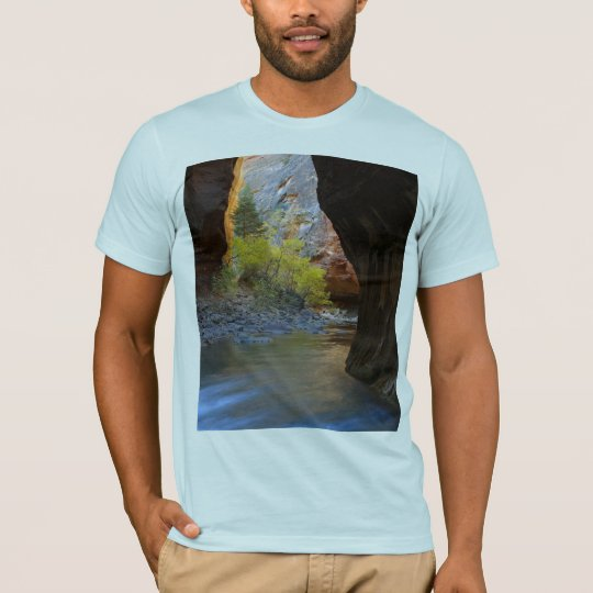 Narrows In Zion National Park T-Shirt