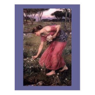Narsissus Picking Flowers Postcard
