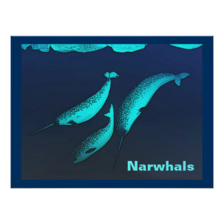 Narwhal Impresiones