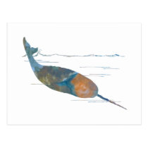 Narwhal Postcard