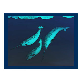 Narwhal Posters