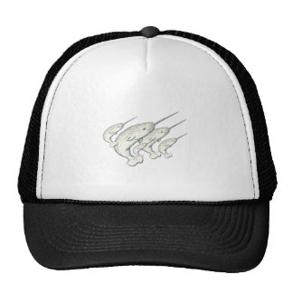 narwhals trucker hat