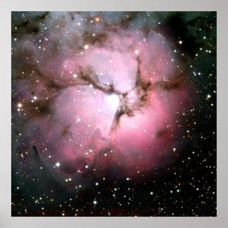 NASA Dusty Pink stars SSC2005 Poster