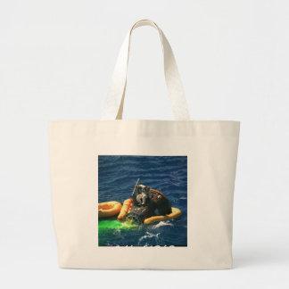 NASA Gemini-Titan 11 Recovery Bags