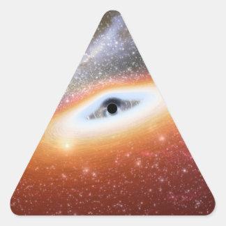 NASA's Black Hole Triangle Sticker