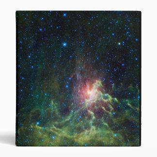 NASAs Flaming star Binders