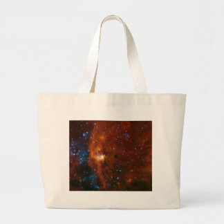 NASAs Stellar Birth Bags
