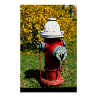 Nashville fire hydrant poster