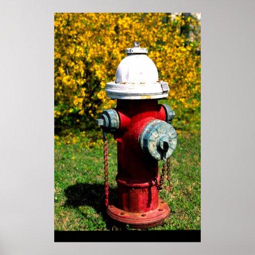 Nashville fire hydrant poster