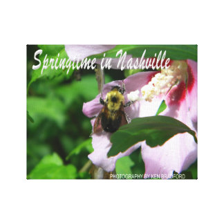Nashville Spring Bee Wrapped Canvas Prints
