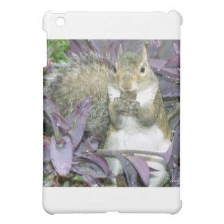 Nashville squirrel iPad mini case