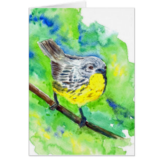 Nashville Warbler - watercolor pencil Cards