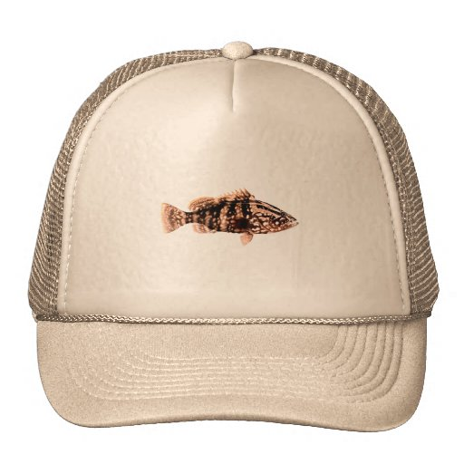 Nassau Grouper Mesh Hats