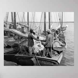 Nassau Sponge Fleet, 1900 Poster