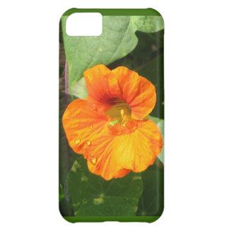 Nasturtium Blossom Case For iPhone 5C