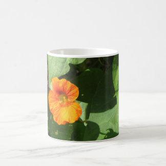 Nasturtium Blossom Coffee Mug