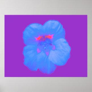 Nasturtium Bright Blue Print