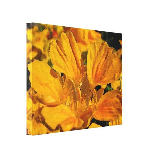 Nasturtium Flower Canvas Print