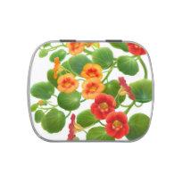 Nasturtium Garden Flowers Candy Tin
