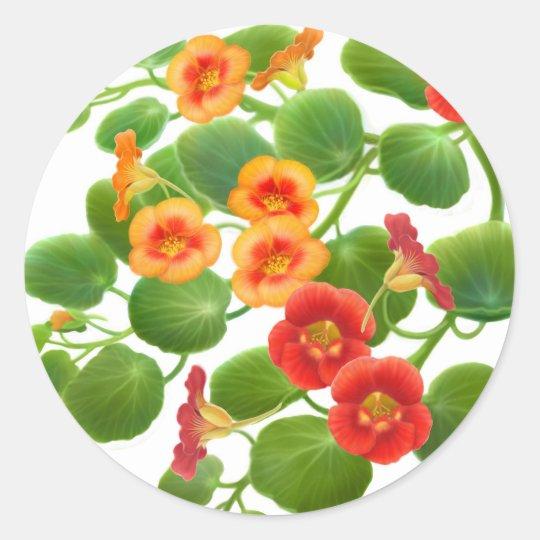 Nasturtium Garden Flowers Classic Round Sticker