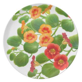 Nasturtium Garden Flowers Plate