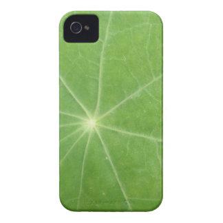 Nasturtium Leaf iPhone 4 Case