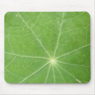 Nasturtium Leaf Mousepad