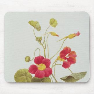 Nasturtium Mouse Pad
